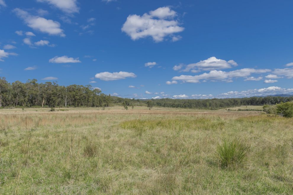 306 Acres with Potential