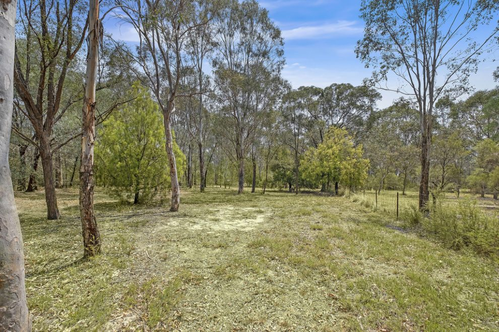 Prime Flood Free Acres in Premier Location