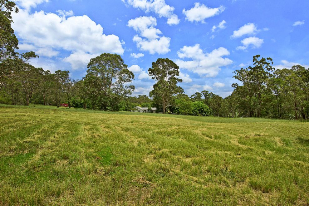 Magnificent Land Bank Opportunity