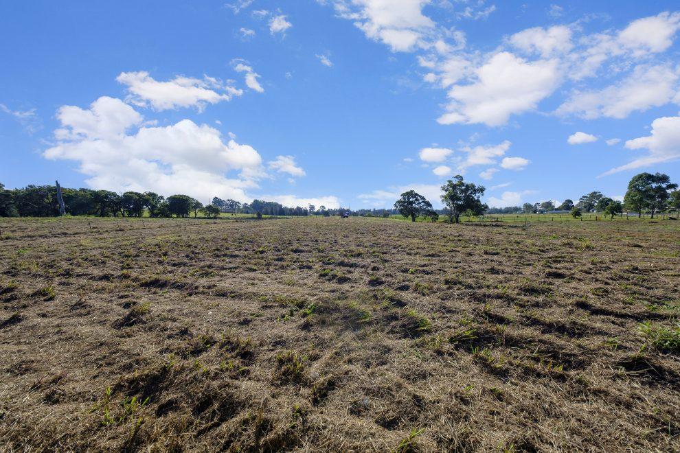 Grazing Farmland